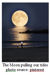 Moon Affecting Tides Image