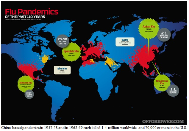 Flu Pandemics of the Past 110 Years Image