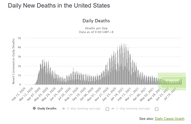 Daily New Death Cases in US Chart